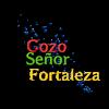 El Gozo
